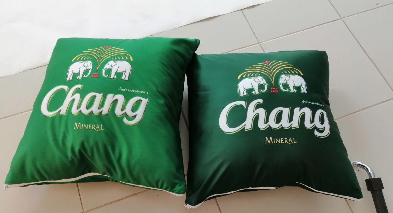 chang (1)